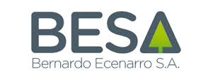Bernardo Ecenarro Paints
